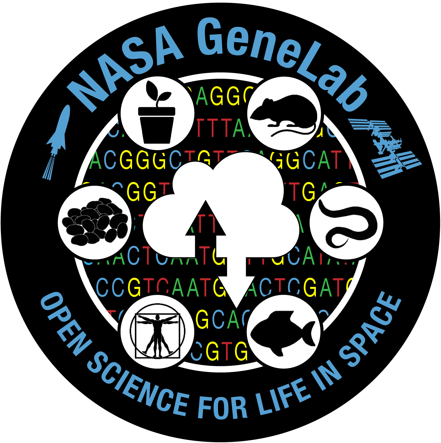 GeneLab: Open Science for Life in Space
